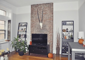 1 Bedrooms, Apartment, For Rent, Carroll Street, 1 Bathrooms, Listing ID 1024, brooklyn, kings, New York, United States, 11215,